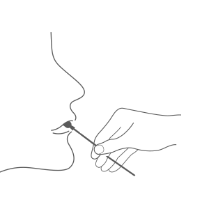 将采样棉签在口腔内部两侧分别轻轻刮擦10次。(儿童需在成人帮助下完成)